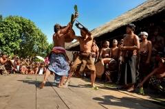 Dedinka Tenganan, Bali