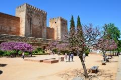 Historická Alhambra, Granada