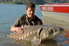 Rybolov jeseterov v Kanade