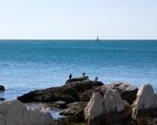 Pláž - Istria, Chorvátsko