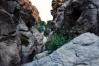 Wadi Rum, Khazali Kaňon