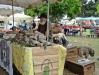 Trhy na Korzike