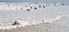 Zmineralizivaná soľ v Mŕtvom mori