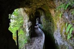 Madeira, leváda Ribeiro- Portella