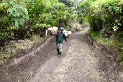 Poznávanie Indonézie, nosiči síry z Kawah Ijen